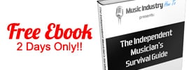 Get My Book Free Till 11:59pm PST Tuesday The 12th Of February 2013 (2 Days Only)