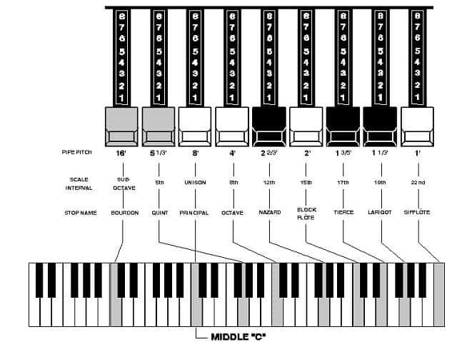 Full organ