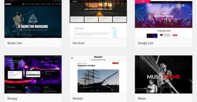 What Wordpress themes are there for musicians websites