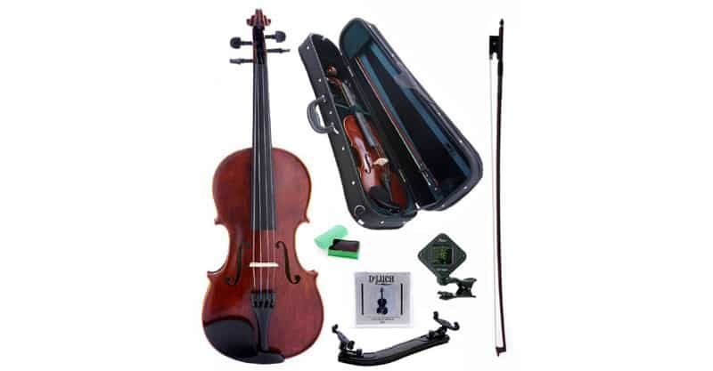 D'Luca PD01 Orchestral Series Intermediate Violin Outfit – 4/4