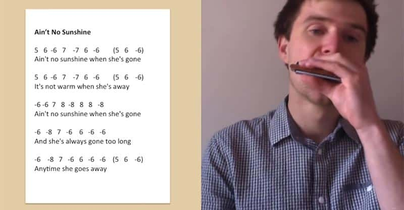 44 Easy Harmonica Songs You Can Learn Fast [Tabs & Video ...
