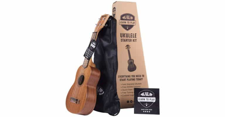 15 Best Cheap Ukuleles For Beginners 2021 For Those After An Affordable String Instrument