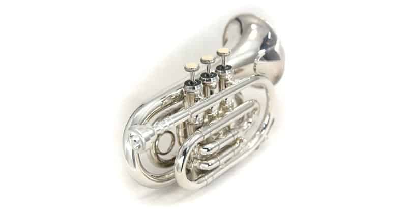 Sky Band Approved Nickel Plated Bb Pocket Trumpet With Case, Cloth, Gloves And Valve Oil