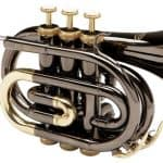 12 Best Pocket Trumpets 2020; We Review The Top Brands For The Money