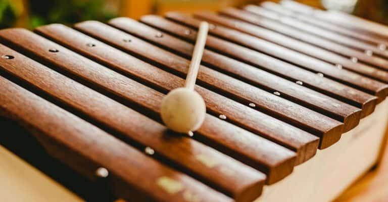 Xylophone Vs Glockenspiel Vs Marimba Vs Vibraphone Vs Xylorimba Vs Marimbaphone – What Is The Difference?