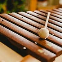 Vibraphone Vs Xylorimba Vs Marimbaphone