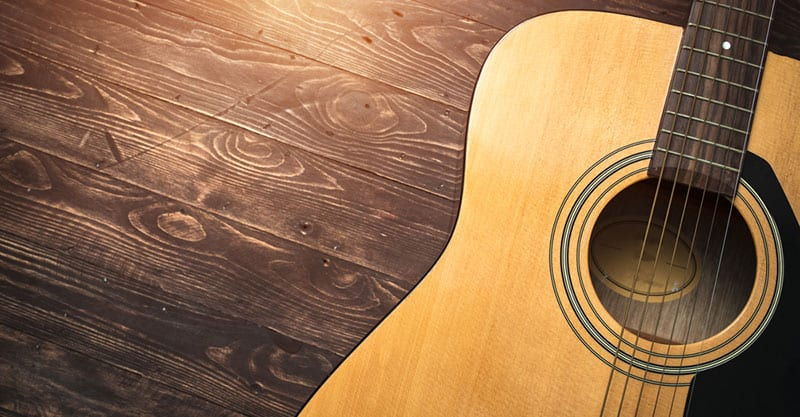 The guitar family of instruments