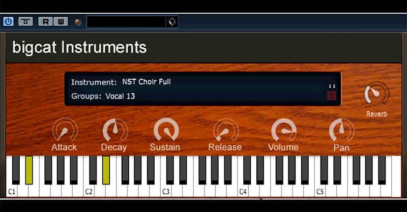 bigcat Instruments NST Vocal