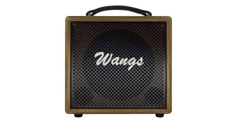 Wangs Amp AC60 60W Dual Channel Acoustic Amplifier Vocal Amplifier